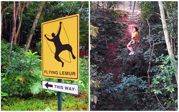 Escape Adventureplay Theme Park, penang attractions, obstacle course, flying lemur, flying fox