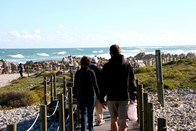 garden route, cape aghulus, shipwreck coast, south africa, southernmost point