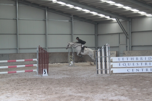 indoor,horse,event