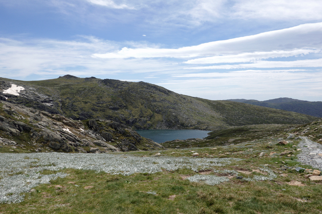 Kosciuszko, walks, carruthers peak, charlottes pass, snowy river