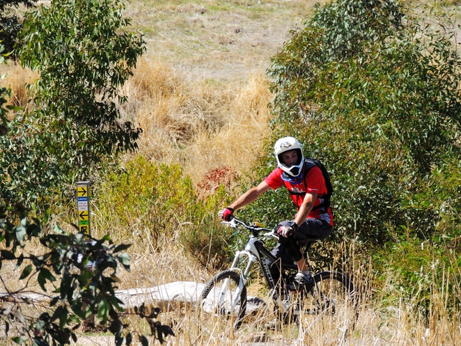 mountain biking, hiking in the, bicycle trails, adelaide hills, off leash dog, south of Adelaide, bike trail, craigburn farm, sturt gorge, mountain bike rider