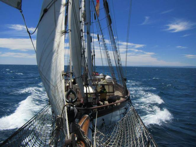 one and all, day sail, dolphin cruise, tall ships, Father's day