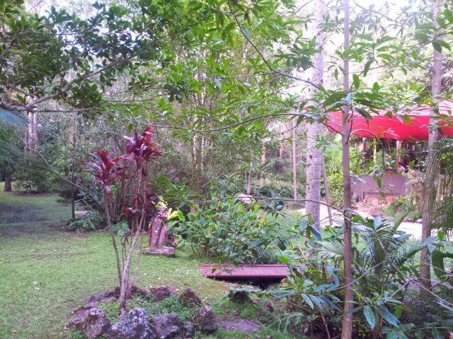 Songbirds Rainforest Retreat, Songbirds Restaurant, fine dining, massages, beauty treatments, yoga, wedding venue, conference venue