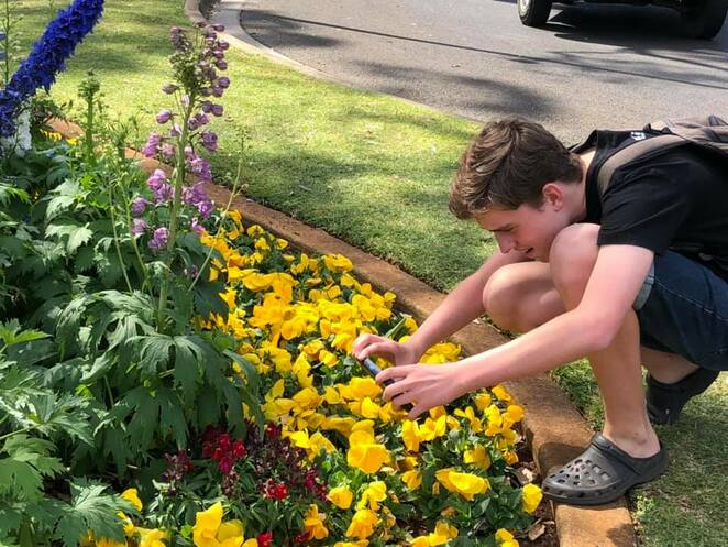 With volunteers across events and tourist information centres, visiting the Toowoomba Carnival of Flowers is child's play