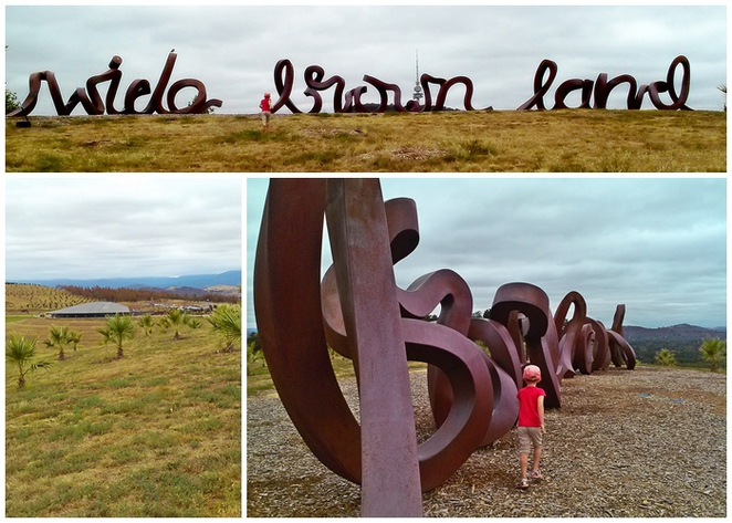 wide brown land, national arboretum, canberra, things to do, tourist attractions, ACT