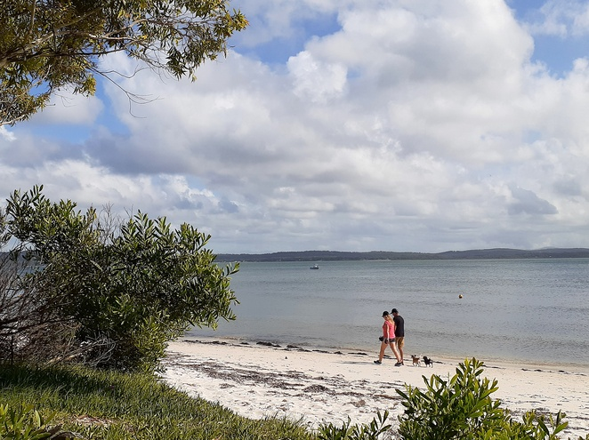 bagnalls beach, nelson bay, port stephens, dog walks, dog friendly, dog exercise area, dogs, walks, beaches, dog bags, off leash, NSW,