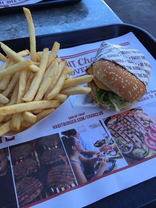 burger, los angeles, beef, fast food, french fries, the habit burger grill, the habit