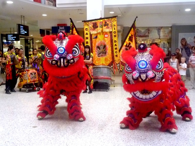 Celebrating the Lunar New Year in Canberra