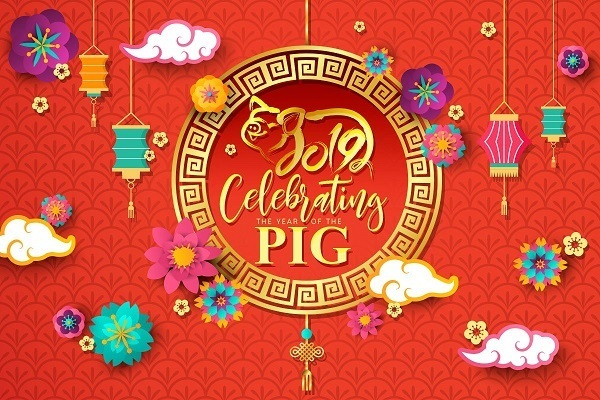 Chinese-new- year-lunar-pig