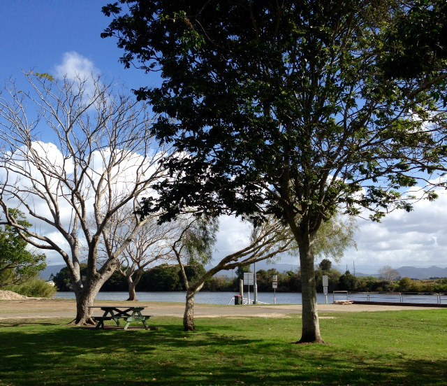 Clarrie Purnell Park, outdoor tables, relax by the Tweed River, large trees, peace and quiet, suitable for boaties, easy parking