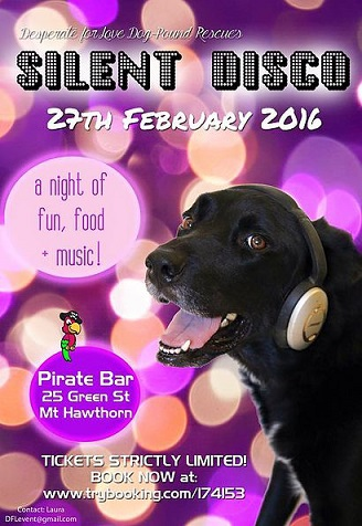 Desperate for Love Dog Rescue Silent Disco