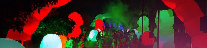 Electric Run Sweet Tooth Acres