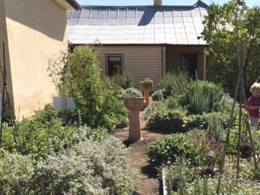Garden, cooma cottage, Yass, Canberra, history, historic house, picnic