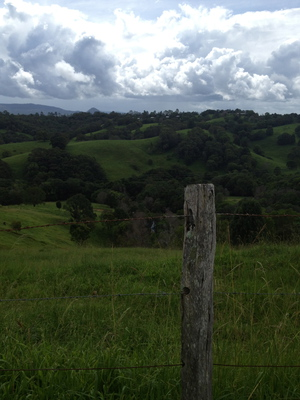 Country behind Cooroy