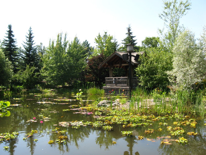 innovation, place, saskatoon, garden, pond