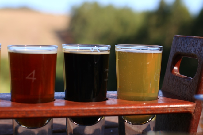 Jarrah Jacks brewery, pemberton, wa microbrewery, boutique breweries wa, west australian beer, south west breweries, things to do in Pemberton