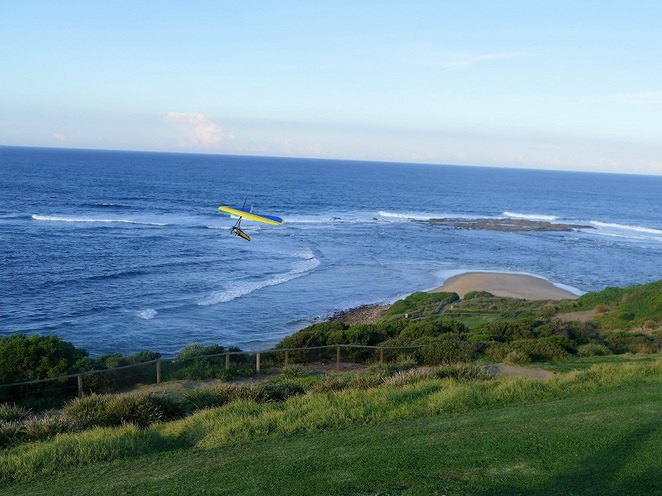 Long Reef Headland for whale watching