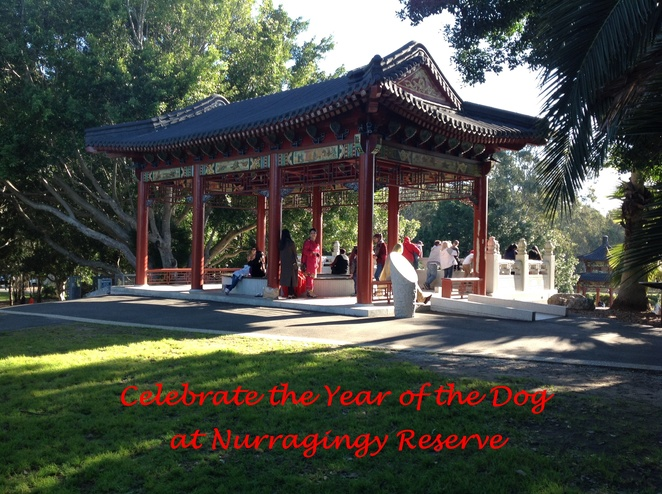 Lunar New Year, Nurragingy Reserve, Year of the Dog