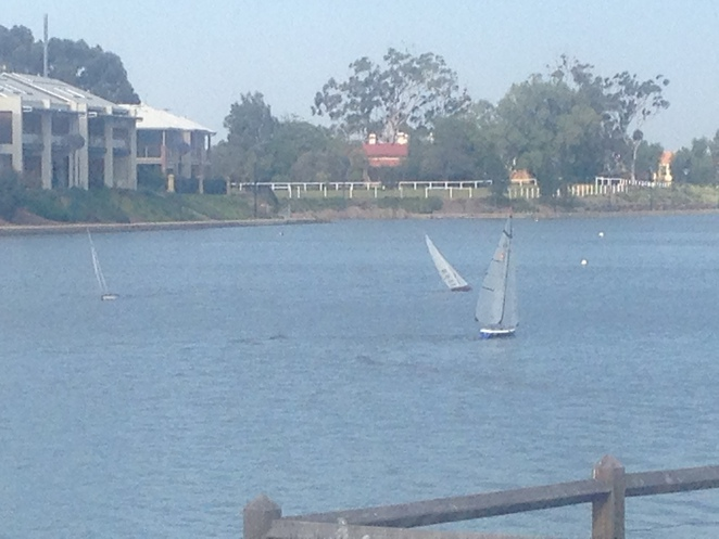 Mawson Lakes Model Yacht Club