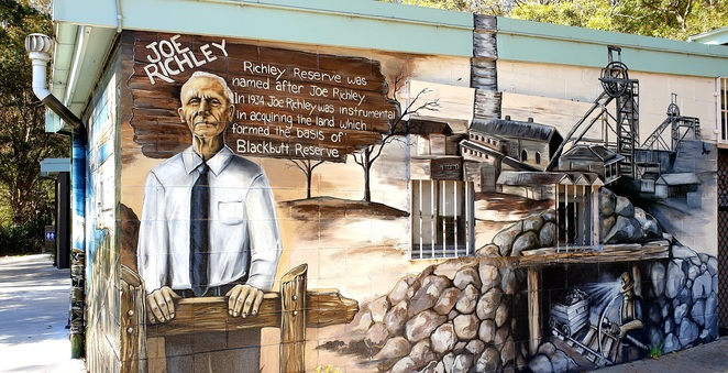 Newcastle, bush, nature, environment, family, murals, free, history