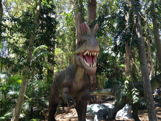 palmersaurus, run, health, fitness, dinosaur, dinosaur park, dinosaurs, tourism, sunshine coast tourist attraction, attraction, fun, kids, scary