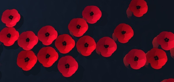 remember-remembrance-red-poppies-poppy-armistice