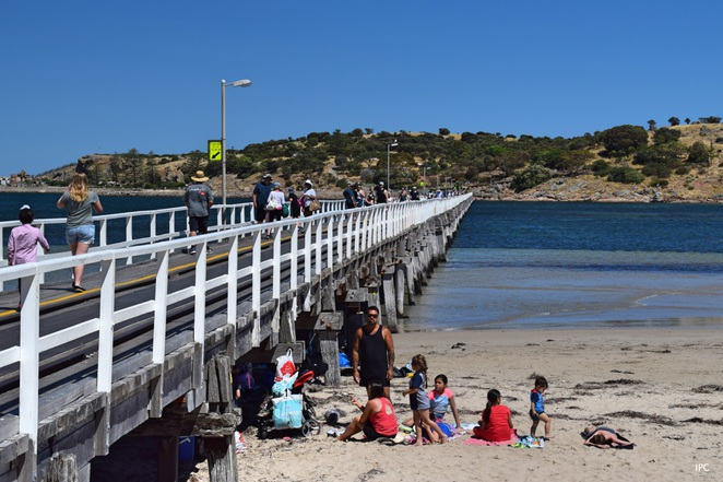 Top 7 things to do at Victor Harbor, Things to do at Victor Harbor, Things to see at Victor Harbor, Causeway, Granite Island, Cockle Train, Heysen Trail, Heritage Trail, History Walk, Port Elliot