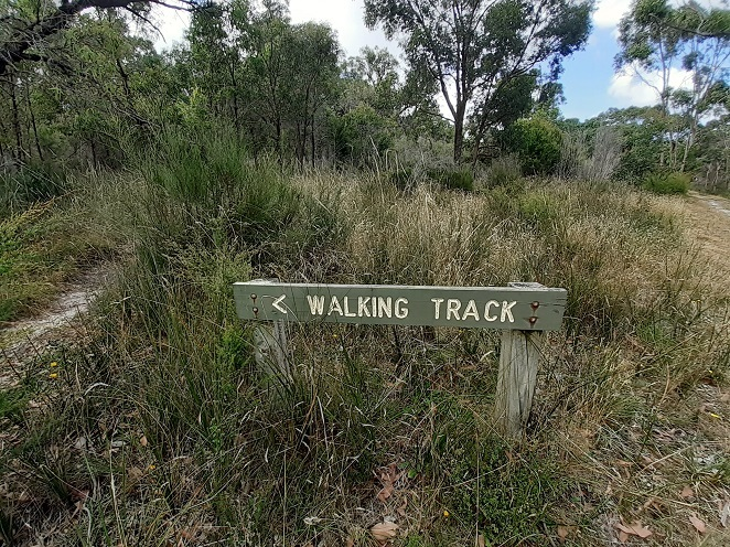 Walking track in The Gurdies Nature Conservation Reserve