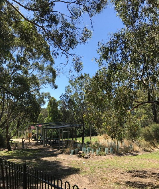 wattle glen park free picnic bbq family day trip nature peppers paddock cafe
