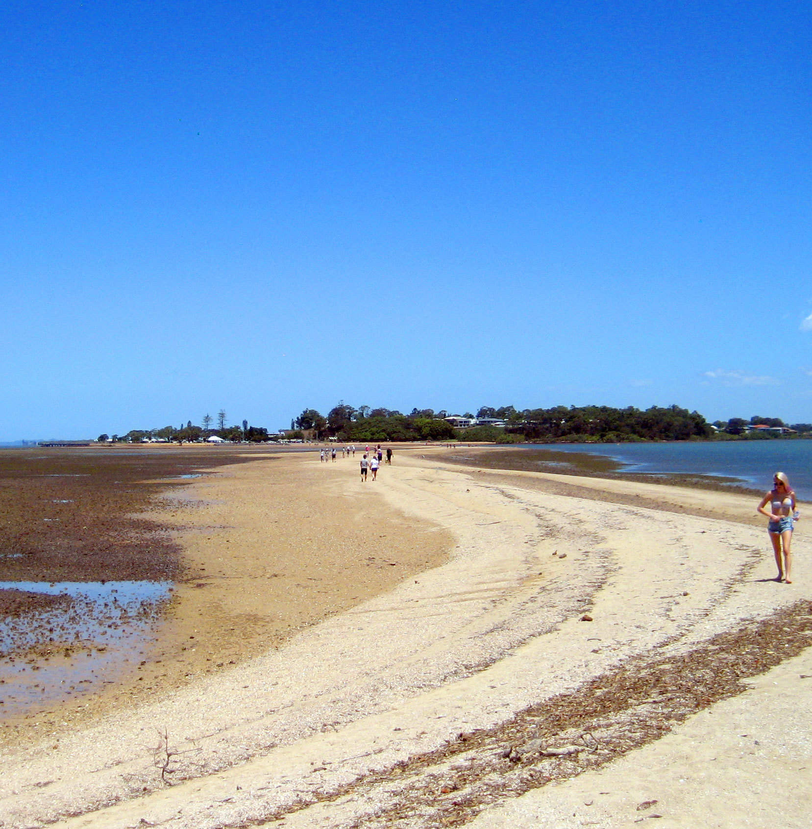 Beach Island: Best Beaches Near Brisbane