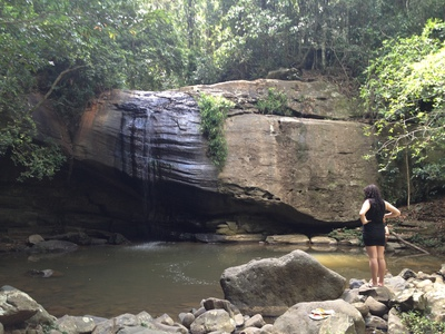 Buderim Falls - not as spectacular as you may have in mind but still a beautiful place to be