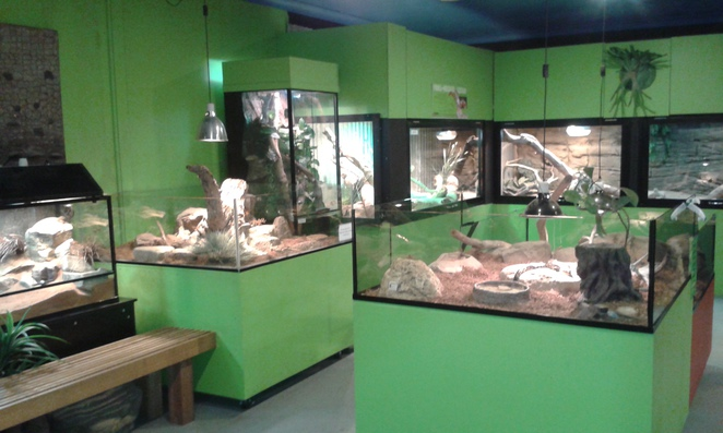 Canberra Reptile Zoo, Gold Creek Village, Canberra