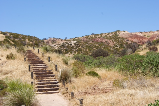 hallett cove, hallett cove beach, beach, rocks, summer, places, adelaide, south australia, beach, summer, conservation park, mother nature, history, glacier