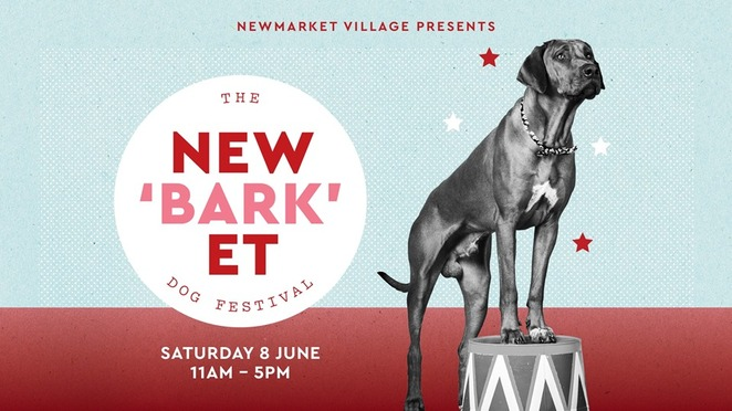 Newmarket, Near Brisbane, Learn Something, Free, Festival, Dog-Friendly, Family Attractions