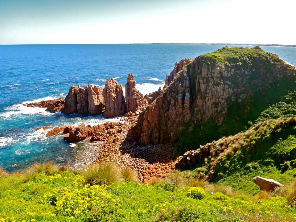 Things To See In Phillip Island