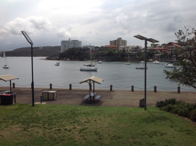 Picnic barbecue facilities at Manly Point Park