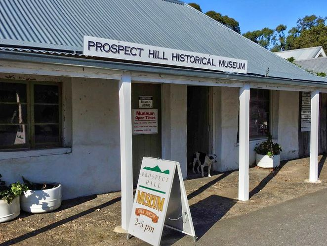 prospect hill historical museum, prospect hill museum, prospect hill, adelaide hills, museum, south australia, kuitpo forest, historical museum, meadows, museum dog