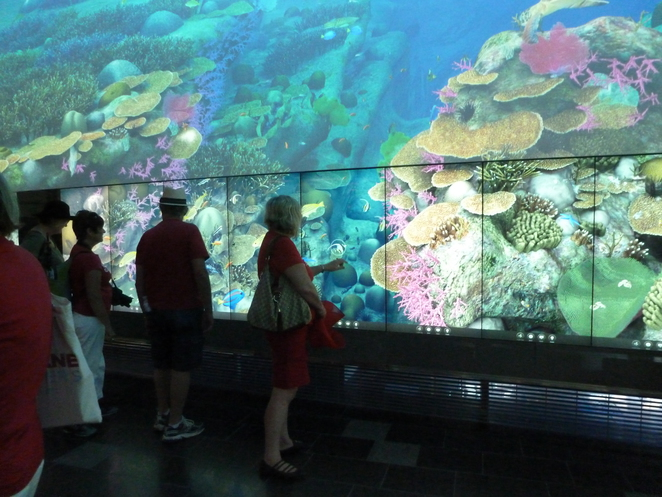 QUT,Brisbane,The Cube,the Great Barrier Reef