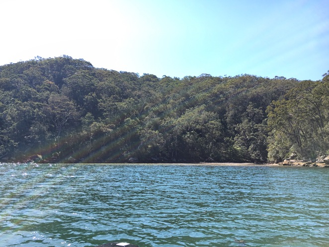 Secluded Beach, Cottage Point, Hawkesbury River
