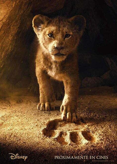 the lion king 2019 charity screening, st vincent de paul asquith youth conference, event cinemas hornsby, community event, fun things to do, charity, fundraiser, hakuna matata, support the vinnies women's shelter, say no to domestic violence, cinema, date night, night life, performing arts, movie buffs, film review