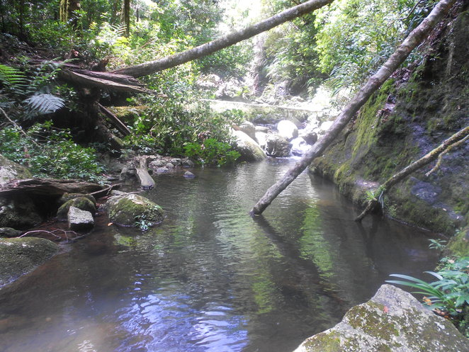 Water hole on Coomera Circuit