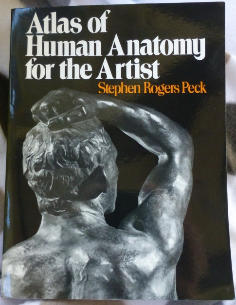 A good anatomy book is useful