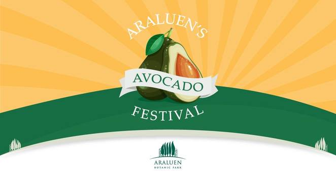 araluen, avocado, things to do in November, festivals, music, family day out