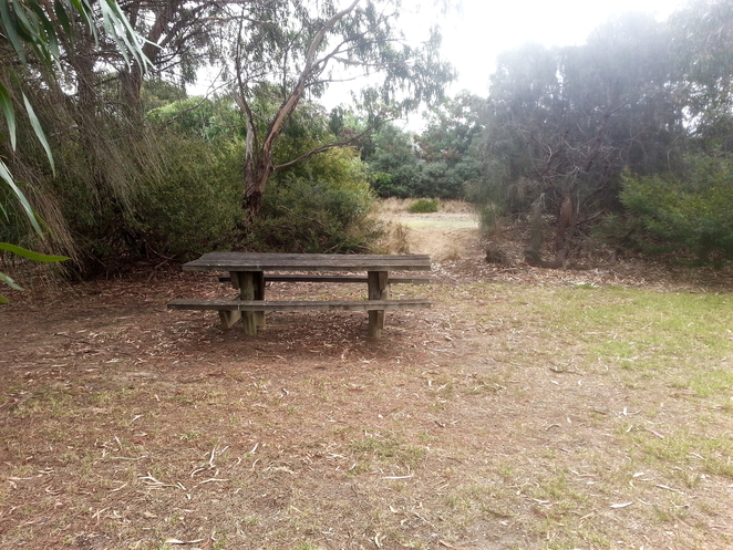 ash wood Close, Ashwood Reserve, Ocean Grove, Park, Picnic Spot, Bellarine, Wetlands, Birdwatching, walking track, Walking trail,