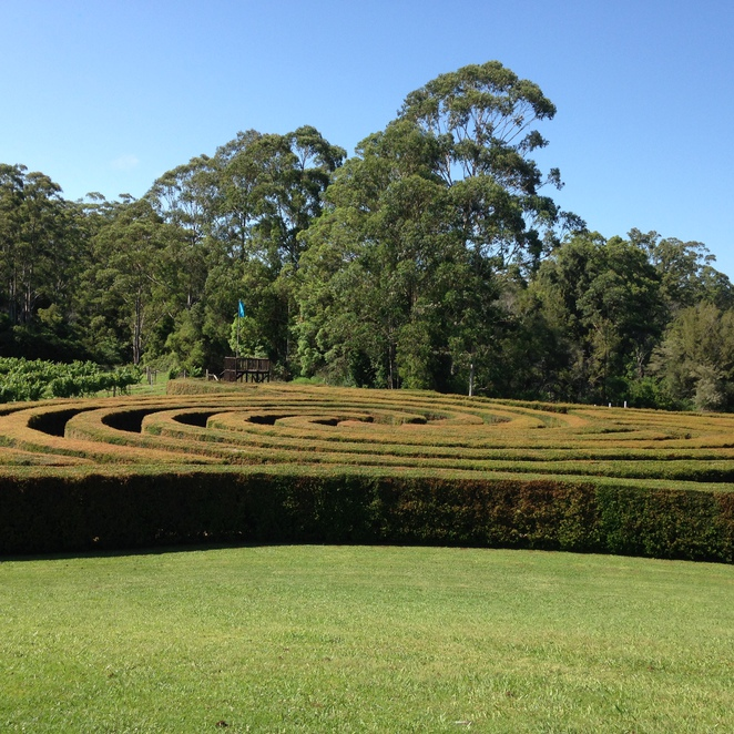 Bago Mountain, Wauchope, Vineyards, Day Escapes, Wine & Food, Shopping, Children, Family, Events