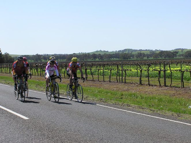 Barossa Classic Cycle Tours