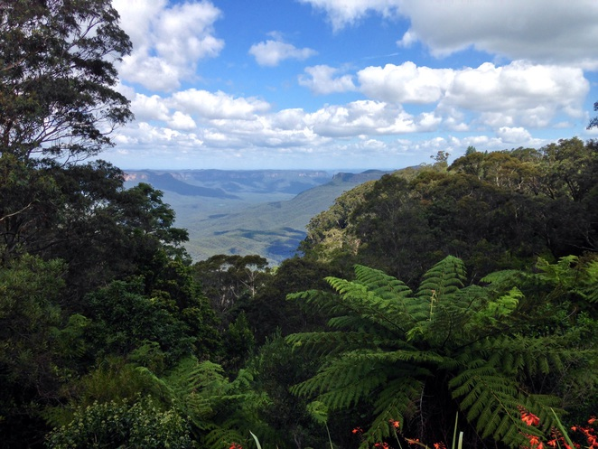 Blue Mountains, National park, Sydney, Katoomba, New South Wales