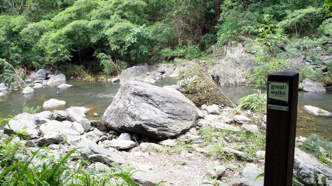 Conondale Range Great walk is one of many multi-day hikes to add to your bucket list