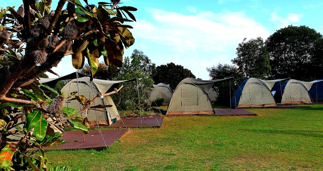 Camping, walks, island, Sydney, Harbour, accommodation, tents, family