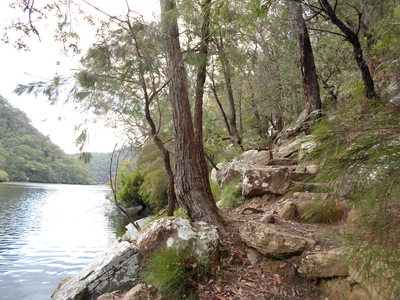 crosslands reserve, great north walk, place of winds, interpretive trail, benowie walking track, berowra creek, berowra valley national park